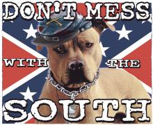 Don't Mess With The South