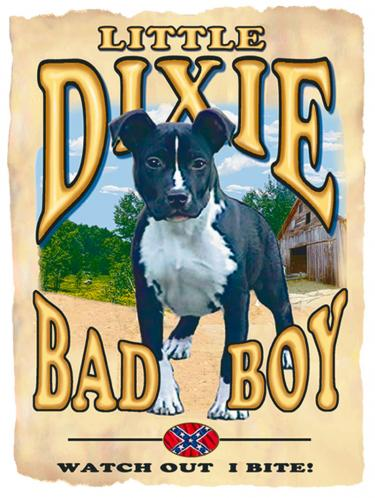 Dixie Bad Boy